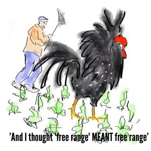 2013-11-19 - Gerda - Free Range