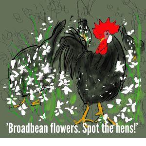 2013-12-04 - Gerda - Braodbean Flowers 1