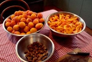 2014-01-19 - Apricots