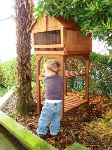 2014-03-19 - Pet House with Child