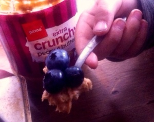 2014-01-30 - Peanut Butter and Blueberries (2)