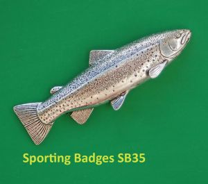 2014-02-16 - Sporting Badge 3
