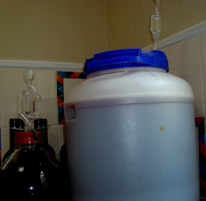 2014-05-04 - Wine Fermenting