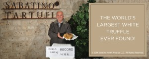 2014-11-27 - Largest White Truffle
