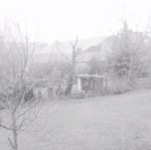 2014-12-28 - Neve a Cremona