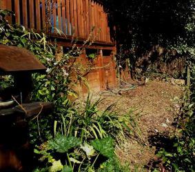 2016-03-27 - Reclaim Garden 10